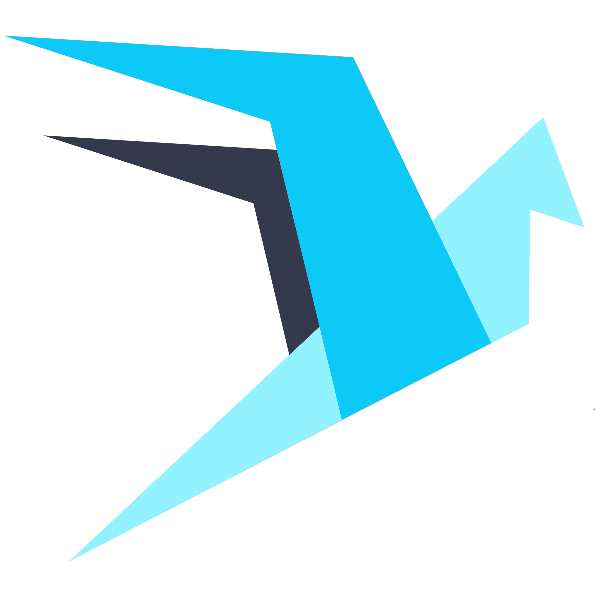 Balance of the WINGS token.