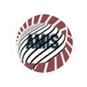 Balance of the AMIS token.
