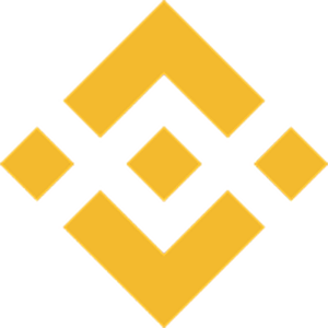 Balance of the BNB token.