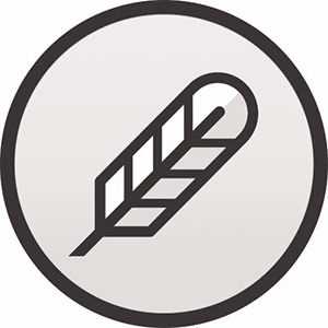 Balance of the Po.et token.