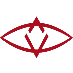 Balance of the SingularDTV token.