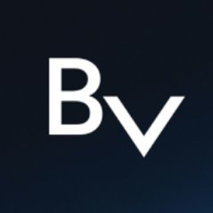 Balance of the BLOCKv Token token.