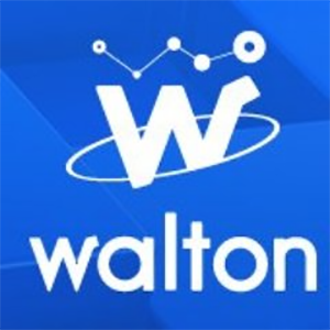 Balance of the Walton Token token.